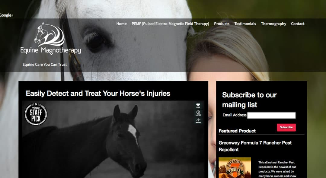 Equine Magnotherapy