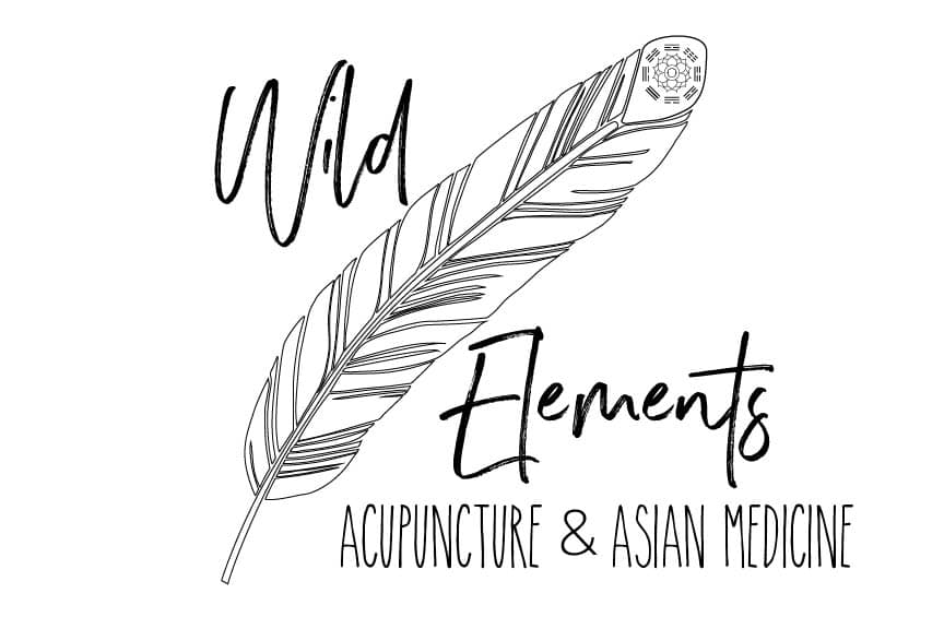 Wild Elements Logo Design in Knoxville TN